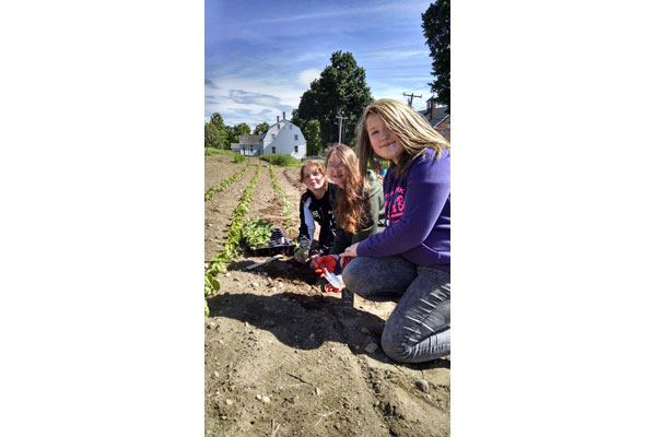 School volunteers help us plant the Shaker Herb Garden in the Spring