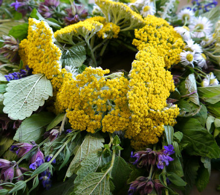 Herbal Wreath Workshop at Shaker Village
