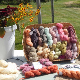 Natural Dyes for Wool Workshop